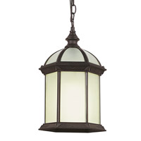 Botanica 1 Light 7 inch Rust Outdoor Pendant
