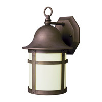 Pub 1 Light 13 inch Weathered Bronze Outdoor Wall Lantern
