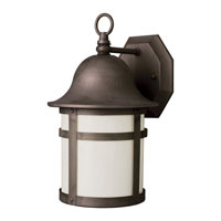 Trans Globe Lighting Energy Efficient Outdoor 1 Light Outdoor Wall Lantern in Weathered Bronze PL-4581-WB