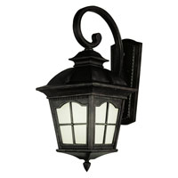 Trans Globe Lighting Energy Efficient 1 Light Outdoor Wall Lantern in Antique Rust PL-5420-BK