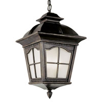 Trans Globe Chesapeake 1 Light Outdoor Hanging Lantern in Antique Rust PL-5421-AR
