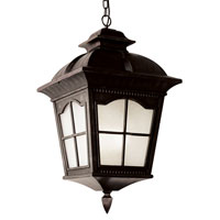 Trans Globe Lighting Energy Efficient 1 Light Outdoor Hanging Lantern in Antique Rust PL-5426-AR