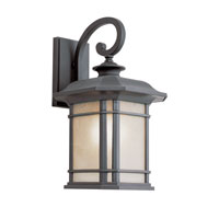 Trans Globe Lighting Energy Efficient Outdoor 1 Light Outdoor Wall Lantern in Black PL-5821-BK