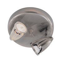 The Spot 2 Light Brushed Nickel Track Light Ceiling Light in Nickel Metal Spotlight