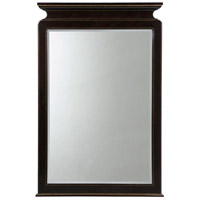 Envoy 60 X 40 inch Ebonised Mirror Home Decor