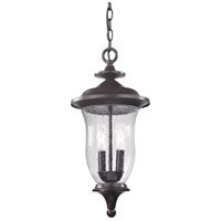 Trinity 2 Light 9 inch Oil Rubbed Bronze Outdoor Hanging Lantern