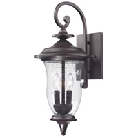 Trinity 2 Light 22 inch Oil Rubbed Bronze Outdoor Wall Sconce
