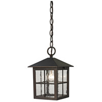Shaker Heights 1 Light 7 inch Hazelnut Bronze Outdoor Hanging Lantern
