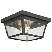 Springfield 2 Light 10 inch Matte Textured Black Outdoor Flush Mount