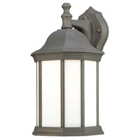 Thomas Lighting PL946263 Hawthorne 1 Light 14 inch Painted Bronze Wall Lantern