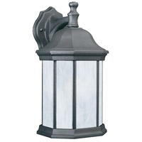 Thomas Lighting PL94627 Hawthorne 1 Light 14 inch Black Wall Lantern