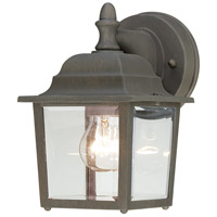 Hawthorne 1 Light 9 inch Painted Bronze Wall Lantern