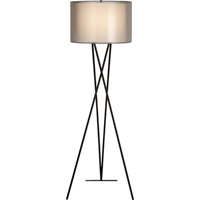 Trend Lighting Triton 1 Light Floor Lamp in Matte Black TF5685-07