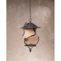 Triarch Industries Froggy 4 Light Outdoor Pendant in Weathered Bronze with Congac Antiqued Glass 75137-12