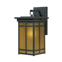 Triarch Industries Signature 1 Light Outdoor Wall in Hand Painted Blacksmith Bronze with Frosted Amber Glass 78101-10