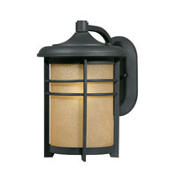 Triarch Industries Signature 1 Light Outdoor Wall in Hand Painted Blacksmith Bronze with Frosted Amber Glass 78151-10