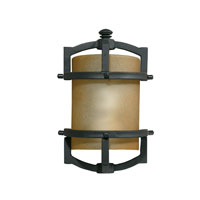 Triarch Industries Signature 1 Light Outdoor Wall in Hand Painted Blacksmith Bronze with Frosted Amber Glass 78210-10