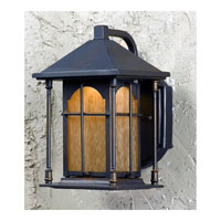 Triarch Industries LED Exterior 1 Light Outdoor Pendant in Oil Rubbed Bronze with Amber Tinted Water Glass 79130-14