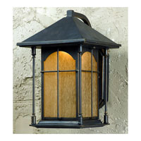Triarch Industries LED Exterior 1 Light Outdoor Pendant in Oil Rubbed Bronze with Amber Tinted Water Glass 79132-14