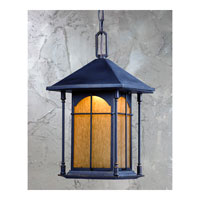Triarch Industries LED Exterior 1 Light Outdoor Pendant in Oil Rubbed Bronze with Amber Tinted Water Glass 79137-14
