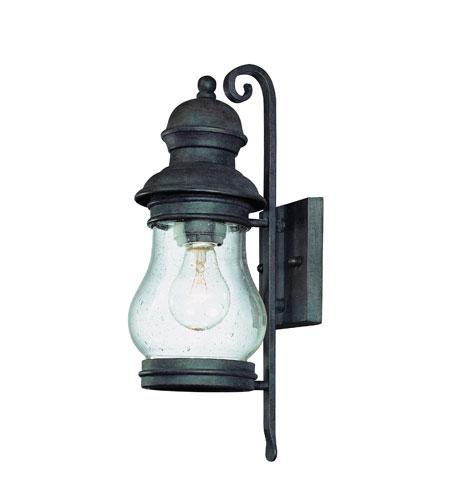 Troy Lighting Hyannis Port 1 Light Outdoor Wall Lantern in Hyannis Port Bronze B1881HPB photo