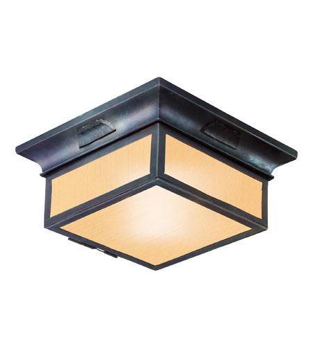 Troy Lighting Cf9000obz Newton 2 Light