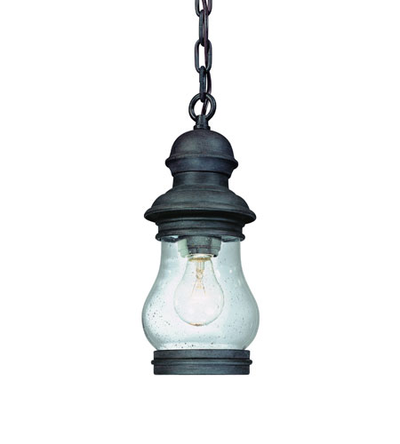 Troy Lighting Hyannis Port 1 Light Outdoor Hanging Lantern in Hyannis Port Bronze F1887HPB photo