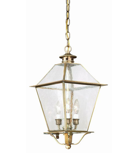 Troy Lighting F8956CI Montgomery 3 Light 10 inch Charred Iron Outdoor Hanging Lantern in Clear photo