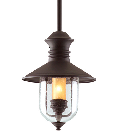 Troy Lighting Old Town 1 Light Outdoor Hanging Lantern in Natural Bronze F9362NB photo