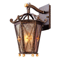 Troy Lighting Cheshire 1 Light Outdoor Wall Lantern Dark Sky in Bronze Leaf B1262BLF-D