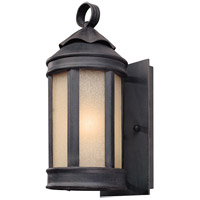 Andersons Forge 1 Light 12 inch Aged Iron Outdoor Wall Lantern in Incandescent