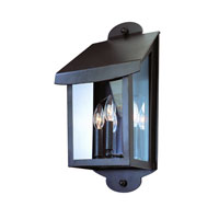 troy-lighting-alpine-outdoor-wall-lighting-b2293nr