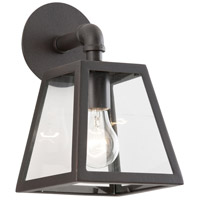 Amherst 1 Light 11 inch River Valley Rust with Coastal Finish Outdoor Wall in Clear