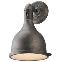 Troy Lighting Telegraph Hill 1 Light Outdoor Wall Lantern in Aged Pewter B3862