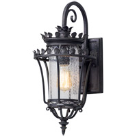 Greystone 1 Light 19 inch Forged Iron Outdoor Wall Light