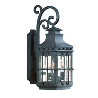 Troy Lighting Dover 1 Light Outdoor Wall Lantern Dark Sky in Natural Bronze B8971NB-D