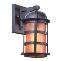 Troy Lighting Aspen 1 Light Outdoor Wall Lantern Dark Sky in Natural Bronze B9250NB-D