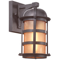 Aspen 1 Light 11 inch Natural Bronze Outdoor Wall Lantern in Incandescent