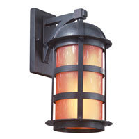 Troy Lighting Aspen 1 Light Outdoor Wall Lantern Dark Sky in Natural Bronze B9253NB-D
