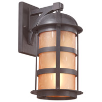 Aspen 1 Light 17 inch Natural Bronze Outdoor Wall Lantern in Incandescent