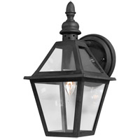 Troy Lighting Townsend 1 Light Outdoor Wall Lantern in Natural Bronze B9620NB