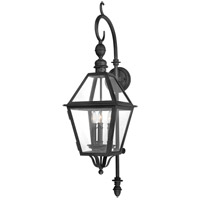 Townsend 3 Light 40 inch Natural Bronze Outdoor Wall Lantern
