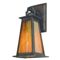 Troy Lighting Lucerne 1 Light Outdoor Wall Lantern in Statuary Bronze B9881SBZ