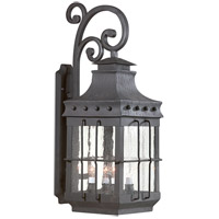 Dover 4 Light 30 inch Natural Bronze Outdoor Wall Lantern in Incandescent
