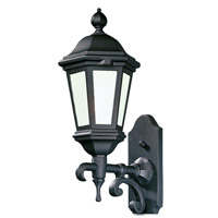 Verona 1 Light 18 inch Matte Black Outdoor Wall Lantern Fluorescent