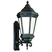 Verona 1 Light 35 inch Matte Black Outdoor Wall Lantern Fluorescent