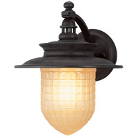 Troy Lighting BL5081 Chamberlain LED 12 inch Vintage Bronze Outdoor Wall Lantern