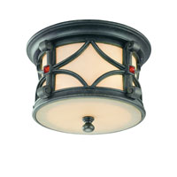 troy-lighting-woodridge-outdoor-ceiling-lights-c2070anb