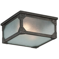 Troy Lighting Hoboken 2 Light Outdoor Flush Mount in Aged Pewter C3870