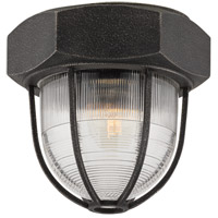 Troy Lighting Acme 1 Light Flush Mount in Aged Silver C3890
